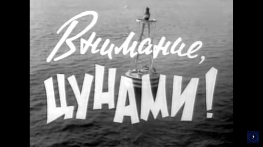 Кадр из фильма «Внимание, цунами»