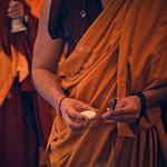 Дни Тибета, фото 73