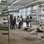 Индустриальная биеннале 2012, фото 82