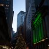 Рождество 2014 в Нью-Йорке, фото 12