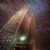 Рождество 2014 в Нью-Йорке, фото 35