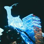 Новый год 2014 в Екатеринбурге, фото 89