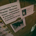 Открытие галереи уличного искусства «Свитер», фото 49