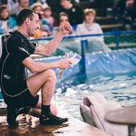Мобильный дельфинарий в Екатеринбурге, фото 11