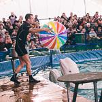 Мобильный дельфинарий в Екатеринбурге, фото 18