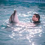Мобильный дельфинарий в Екатеринбурге, фото 52