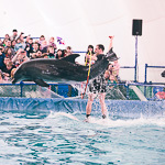 Мобильный дельфинарий в Екатеринбурге, фото 55