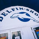 Мобильный дельфинарий в Екатеринбурге, фото 58