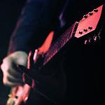 Концерт гитариста Омара Торреза, фото 25