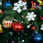 Новогодние ёлки в Екатеринбурге, фото 11