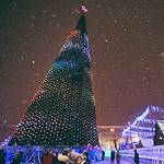 Новогодние ёлки в Екатеринбурге, фото 39