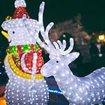 Новогодние ёлки в Екатеринбурге, фото 77