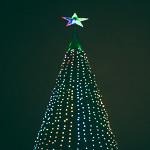 Новогодние ёлки в Екатеринбурге, фото 81