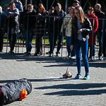 День хорька в Екатеринбурге, фото 1