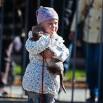 День хорька в Екатеринбурге, фото 10