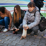 День хорька в Екатеринбурге, фото 42