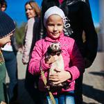 День хорька в Екатеринбурге, фото 48