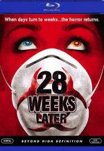 28 недель спустя. Обложка с сайта kinopoisk.ru
