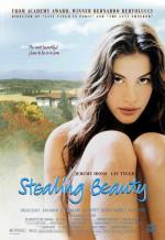 Ускользающая красота. Обложка с сайта amazon.de