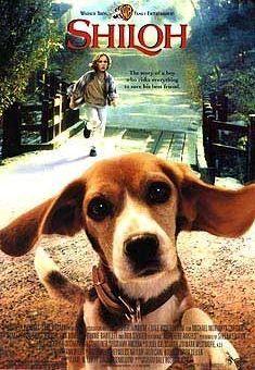 Мой лучший друг Шейлок. Обложка с сайта amazon.com