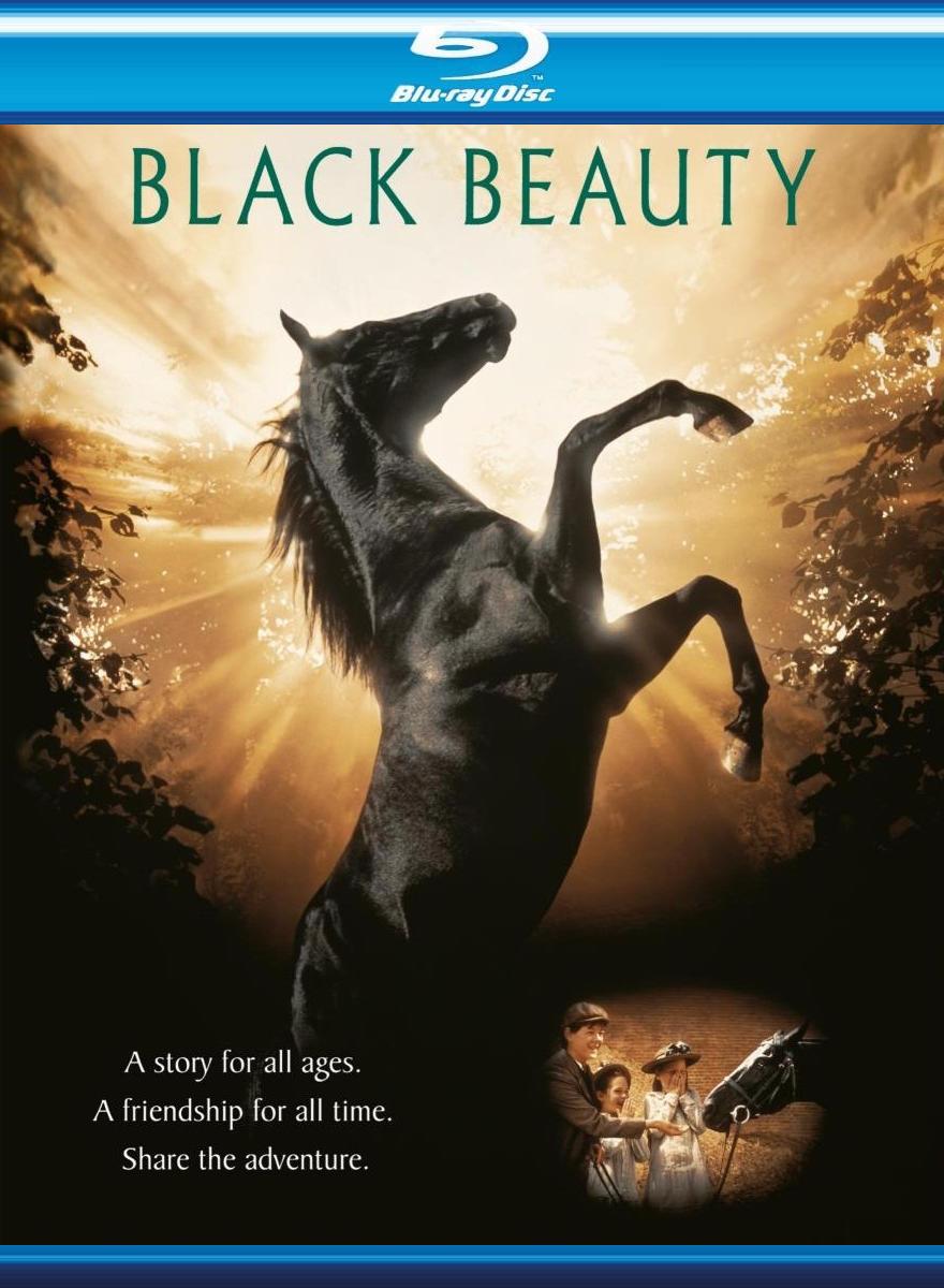 Черный красавец. Обложка с сайта amazon.com