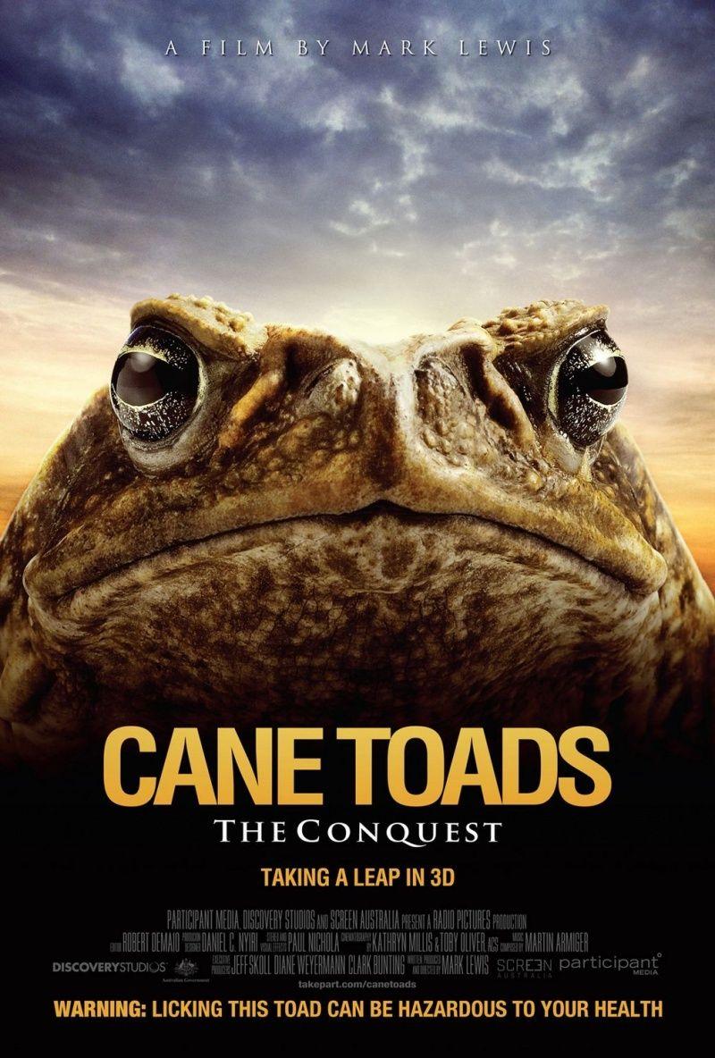 Тростниковые жабы: Оккупация. Постер с сайта kinopoisk.ru