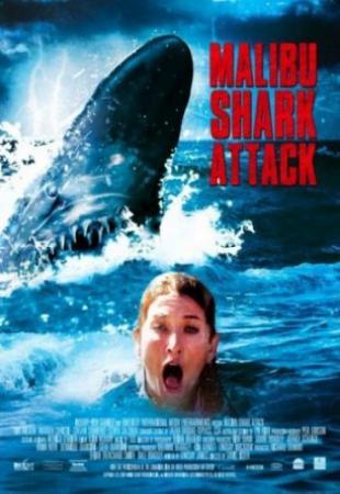 Акулы Малибу. Постер с сайта fastpic.ru