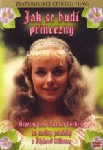 Как разбудить принцессу. Обложка с сайта ozon.ru