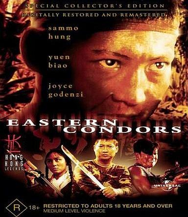 Восточные кондоры. Обложка с сайта kino-govno.com