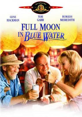 Полная Луна в голубой воде. Обложка с сайта imagepost.ru