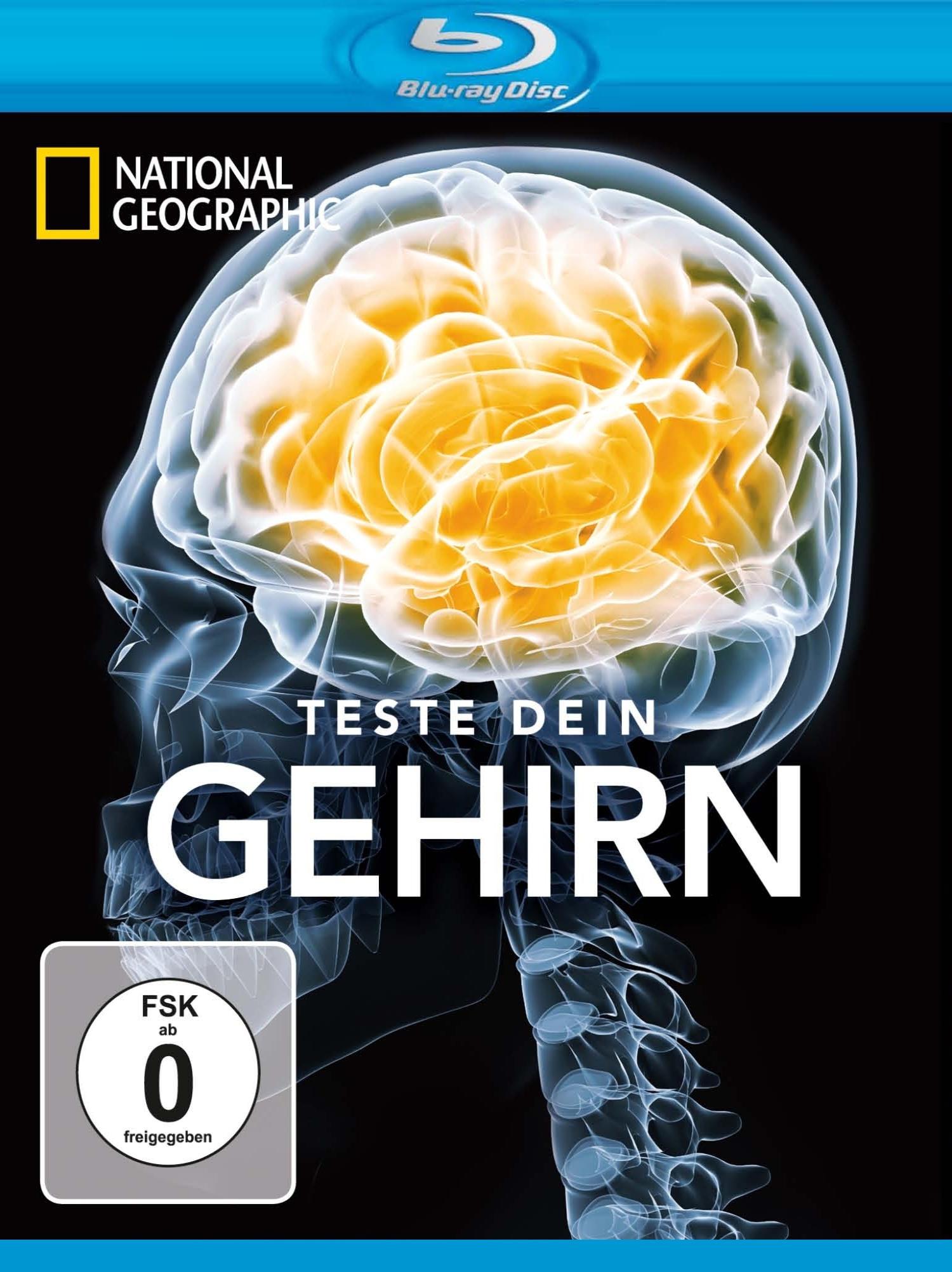 Испытайте свой мозг. Обложка с сайта bolero.ru