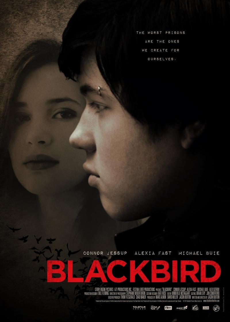 Чёрный дрозд. Обложка с сайта keep4u.ru