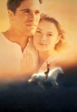Храбрых сердцем не сломить. Обложка с сайта ozon.ru