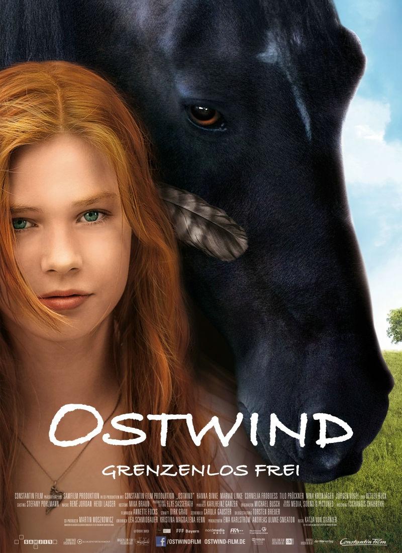 Восточный ветер. Обложка с сайта kinopoisk.ru