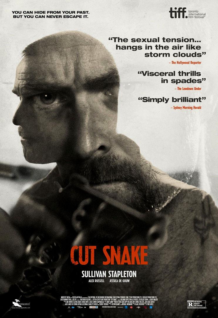 Раненый змей. Обложка с сайта bolero.ru