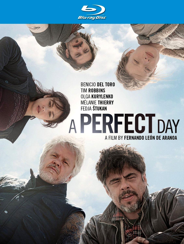 Идеальный день. Обложка с сайта kino-govno.com