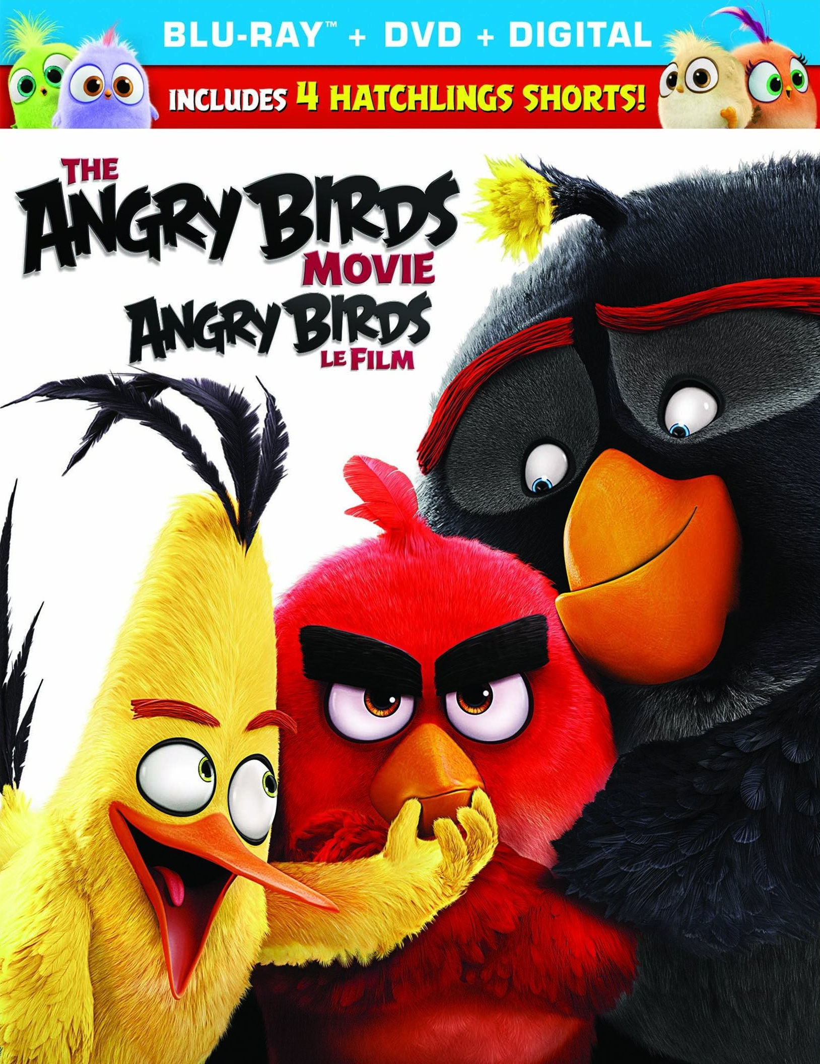 Angry Birds в кино. Обложка с сайта ipicture.ru