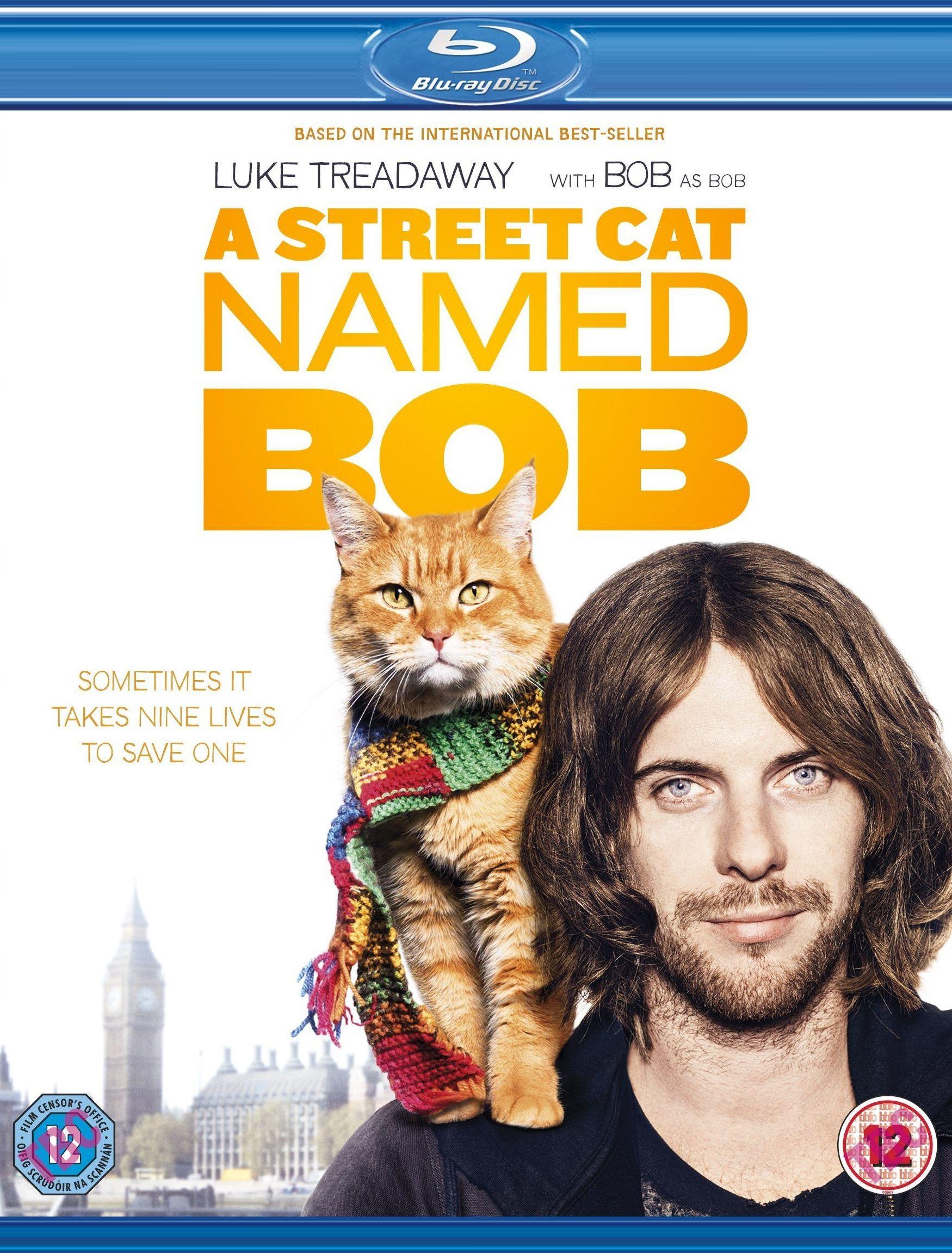 Уличный кот по кличке Боб. Обложка с сайта radikal.ru