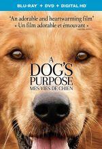 Постер фильма «Собачья жизнь»