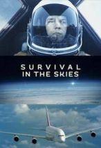 Выжить в небе. Обложка с сайта kino-govno.com