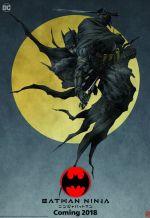 Бэтмен-ниндзя. Обложка с сайта kino-govno.com