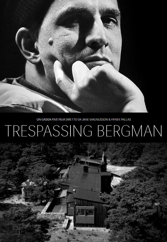 Вторжение к Бергману. Обложка с сайта imageshost.ru