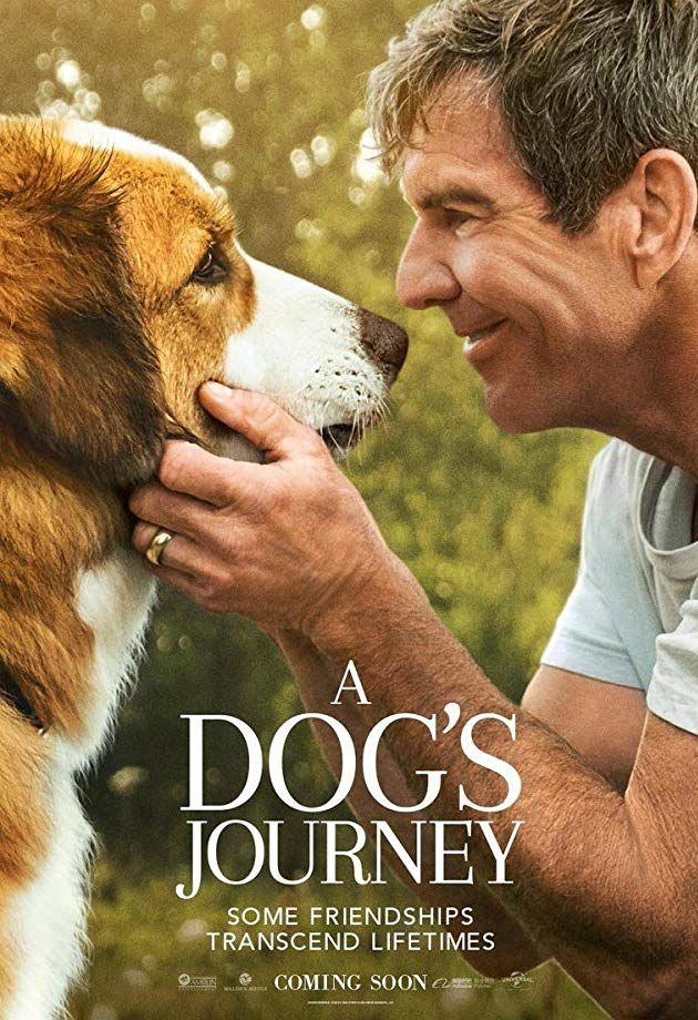 Собачья жизнь 2. Обложка с сайта imagepost.ru