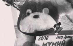 Пес-Боуи. Фото с сайта rollingstone.ru