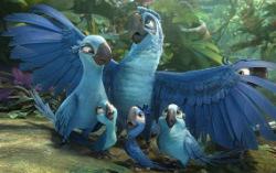 Кадр из мультфильма «Рио 2»