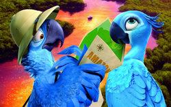 Постер к мультфильму «Рио 2»