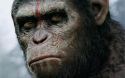 Постер фильма «Планета обезьян: Революция»