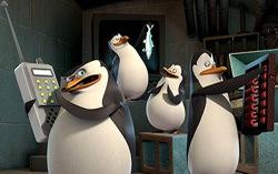 Кадр из мультфильма «Пингвины из «Мадагаскара».