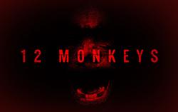 Постер сериала фильм «12 обезьян»