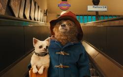 Кадр из фильма «Приключения Паддингтона»